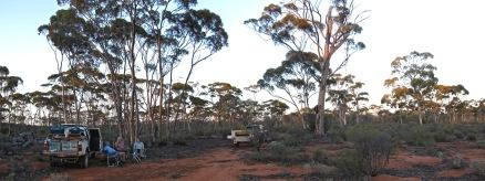 Camp site near Walgernia Rock Phot ny Nina McLaren